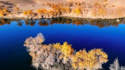 中办国办:明年起领导干部离任要审计自然资源资产