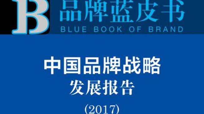 《品牌蓝皮书》:近年推动中国国家品牌文化认同取得积极成果