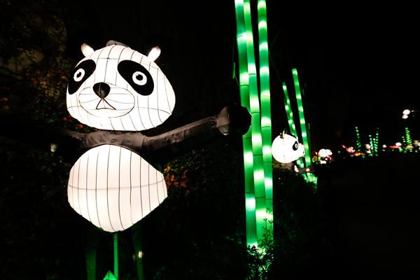 """上海迪士尼""""刮起""""浓郁圣诞风 欢乐谷5000万盏华灯将点亮申城"""
