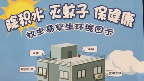 冬季是灭蚊最佳时机 这些地方未来三个月上海重点治理