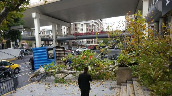 沪淮海中路重庆中路路口:货车转弯箱体掉落 砸断行道树和灯杆