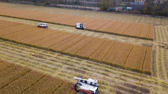 农业部:初步计划2018年培养100万以上新型职业农民