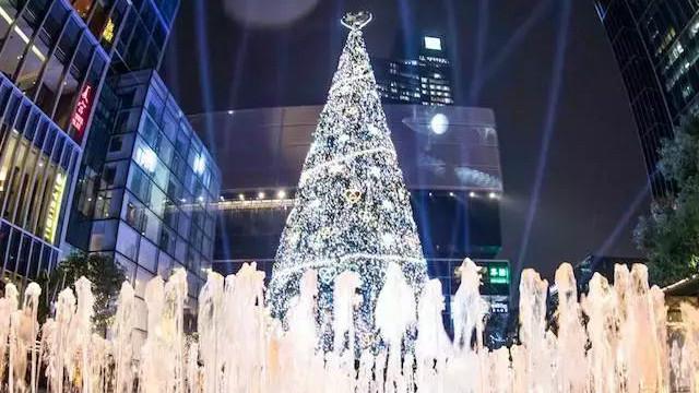 全上海的圣诞树都已经亮灯啦!个个都美得冒泡!