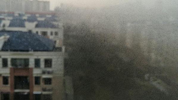 上海今天最高10℃ 午前有轻度霾