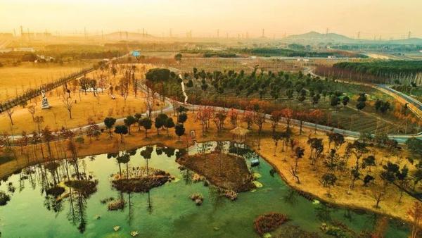 """广富林郊野公园今起免费开放  郊区""""吸氧游""""又添新去处"""