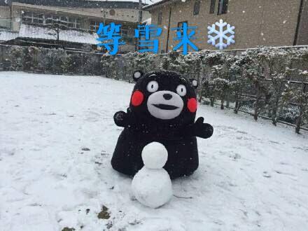 感觉全世界都在下雪!只有上海在下雨下雨下雨!