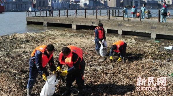 清除滩涂水葫芦残骸  保洁工人寒风里捡拾