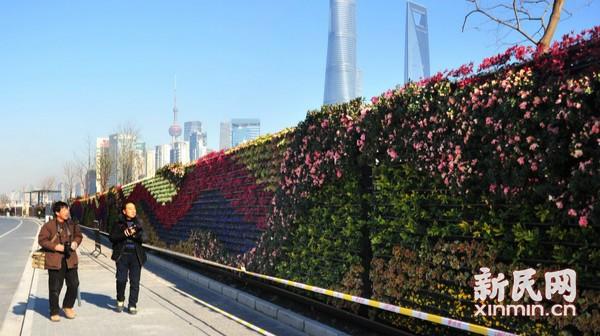 南外滩花墙为滨水区增色
