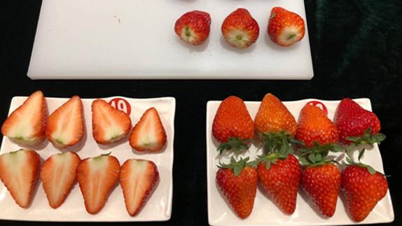 特殊香味、酸甜适宜、柔软多汁 上海本地产草莓评选出炉哪家强?