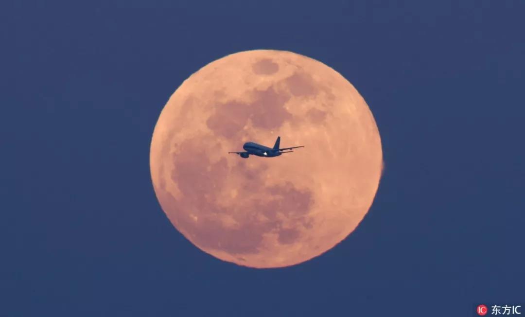 152年等一回!昨晚,全国人民都在背着上海看月亮...