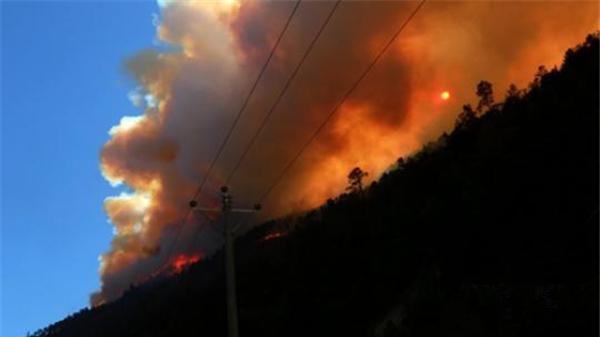 """四川雅江""""2.16""""森林火灾尚未控制 过火面积已达66公顷"""