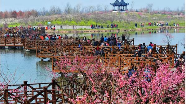 门票大优惠,明天女神节玩转上海各景点