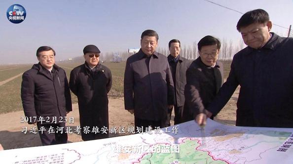 微视频丨从深圳到雄安