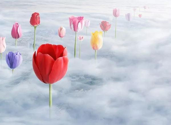 情怀与匠心之下,中国地产界开出的浪漫之花