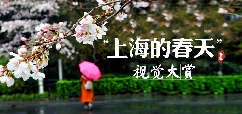 上海的春天
