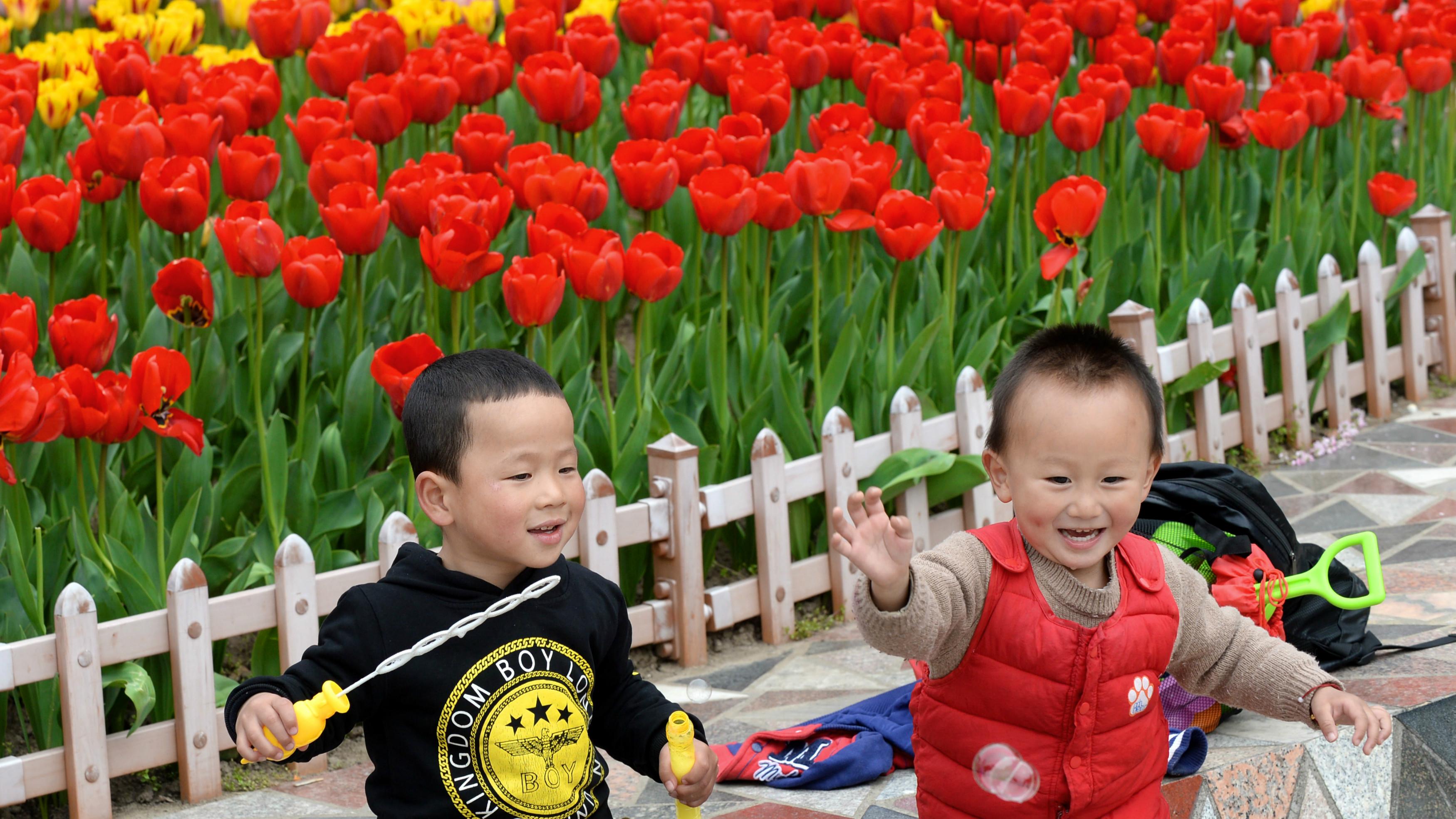 彩化申城 让上海的美丽再升级
