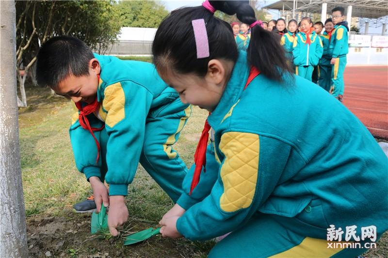 朱泾小学:拥抱春天 播种绿色
