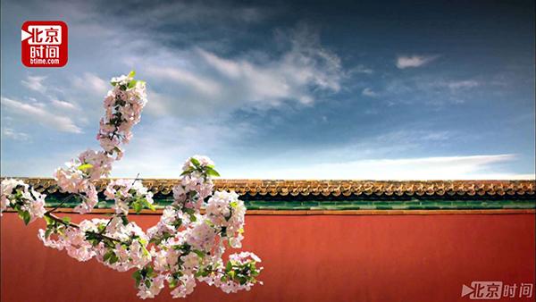 【沙画mv】一抹中国红 红墙连万家