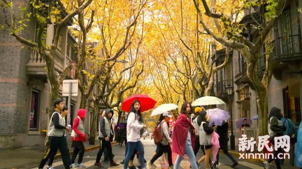拿起相机寻找上海的色彩——人文个性色彩篇