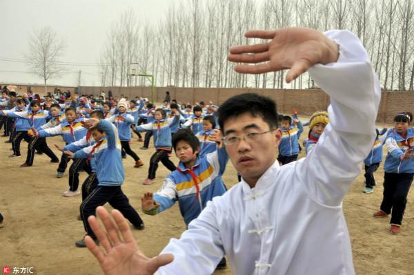 专家:把太极拳纳入各高校体育课程