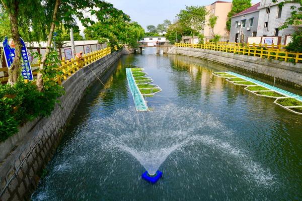 水清岸绿:大场镇东走马塘大变身