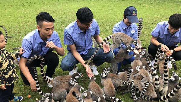 球员颜骏凌带队体验当动物保育员 给老虎喂奶帮助打扫笼舍