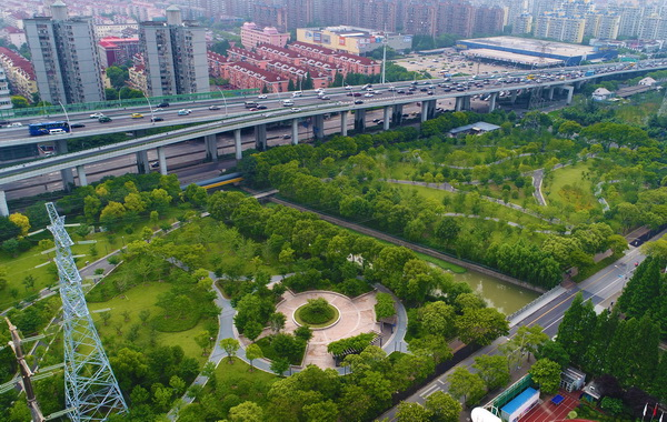 """市中心最大高压走廊违建群变身""""生态绿廊"""""""