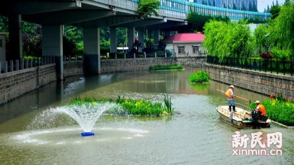东走马塘水清岸绿  生态环境美如画