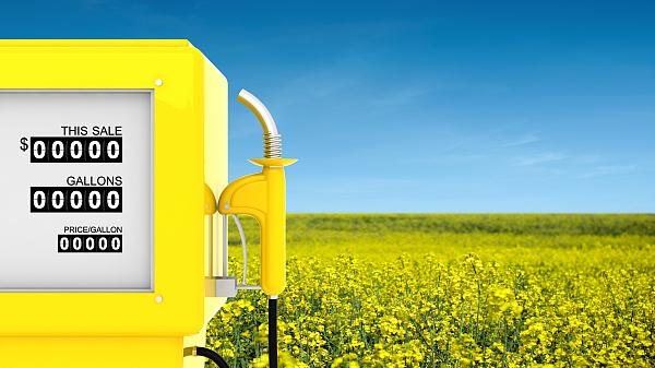 图解:哪些车辆能使用生物柴油,使用后的效果又如何?