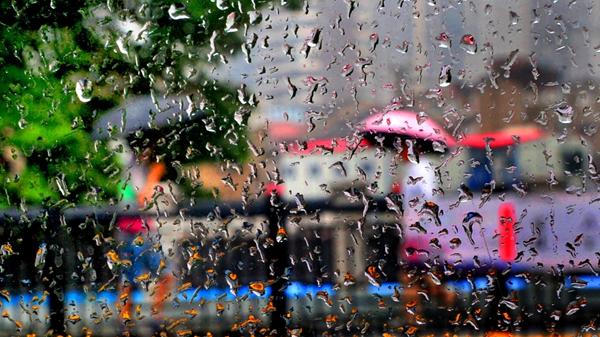 雨具常备!今天上海阴有阵雨或雷雨 局地有大雨