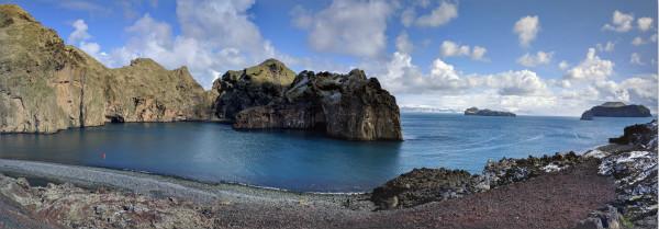 全球首个开放式水域白鲸自然保护区将在冰岛设立
