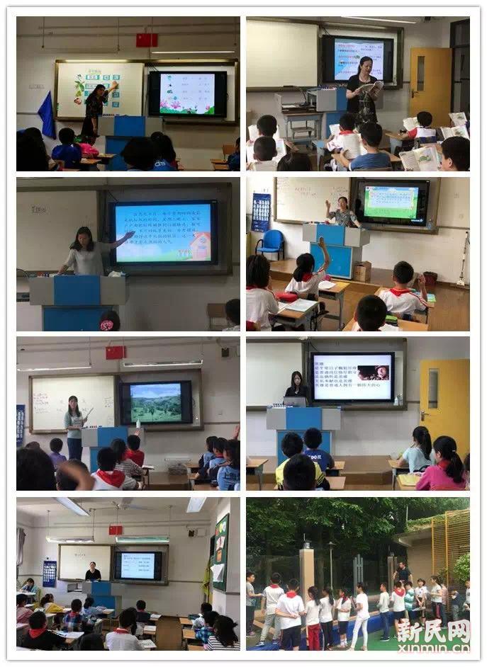 金沙江路小学:花叶共扶持,课堂促成长
