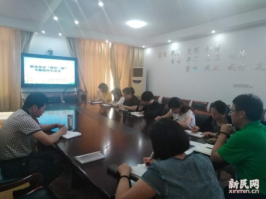 张堰小学召开专题组织生活会