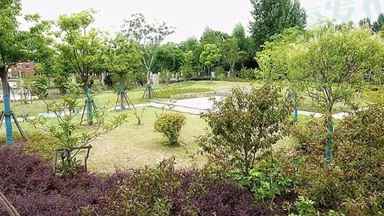 上海散步休闲新去处:宝山新添一批绿地项目