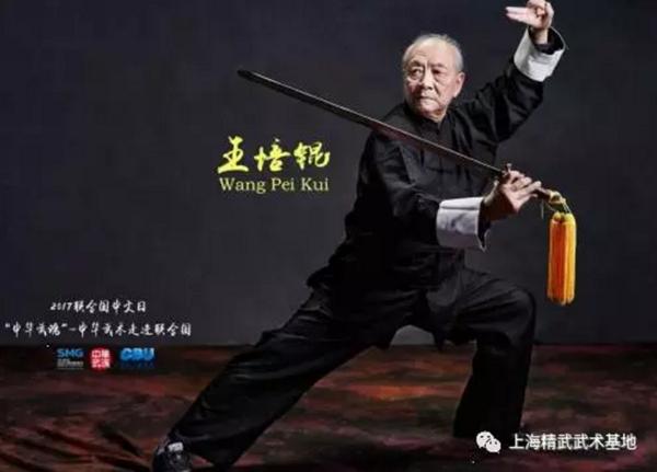 """王培锟教授:只以""""内动""""求养生是不够的"""