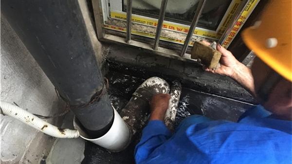 老式里弄漏雨报修量激增 维修人员两小时内上门处置