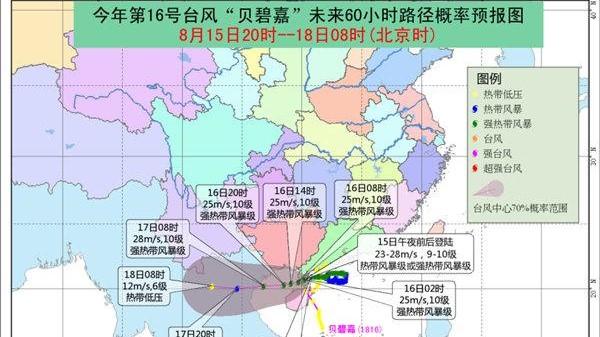 """""""贝碧嘉""""在广东雷州沿海登陆,已减弱为热带风暴级"""