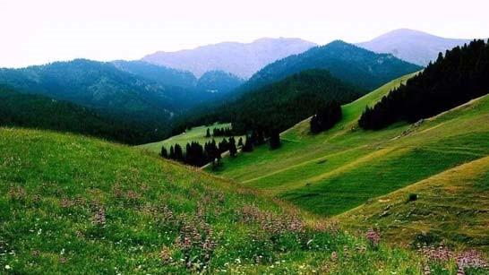 """【新时代·幸福美丽新边疆】隐匿在大山中的村落 是画家眼中的""""世外桃源"""""""
