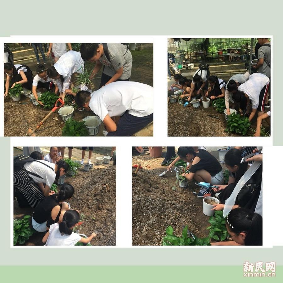 金山初级中学:走进绿化管理所,体验养绿护绿