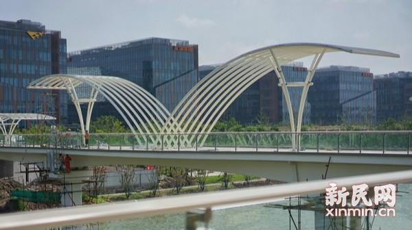"""""""七彩聚虹,梦想筑桥""""国展中心连廊""""飞鸟桥""""基本建成"""