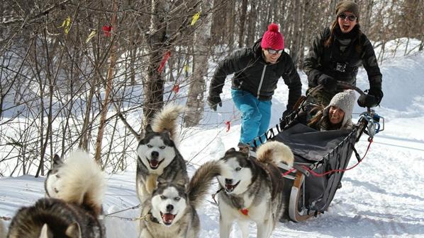 魁北克省旅游局携手沪上五大旅行社推冬季特价冰雪线路