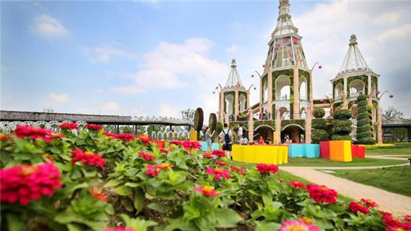 33米高鲜花城堡!浦江郊野公园奇迹花园秋季艺术花展开展