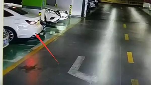 """警方通报""""女司机倒车连撞豪车"""":驾龄2年,并未逃逸"""