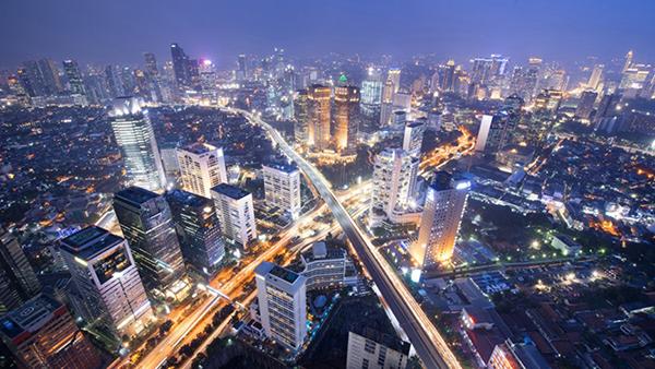 视频|进博会主宾国:中国市场80%燕窝原料从这国来