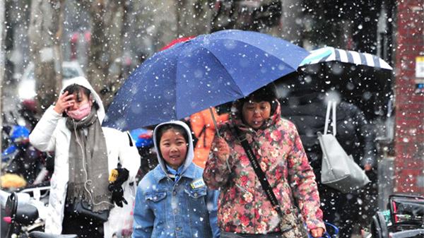 大雪!大雪!今天上午上海雨水渐小雪花变大变密 预计明天早晨到上午仍有雨雪
