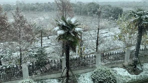 入冬无悬念!上海今夜仍有明显降雪 预计下周三雨雪结束