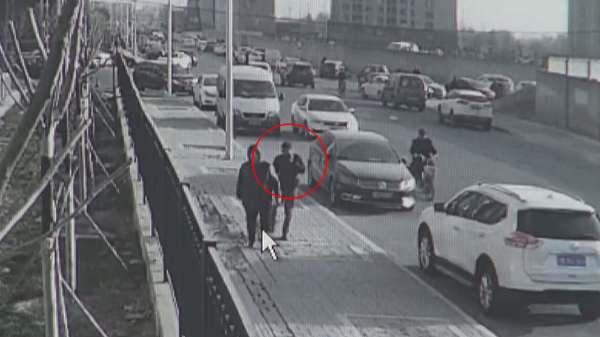 """北京两男子专挑遛犬人""""碰瓷"""":一个月得手20余起 被刑拘"""