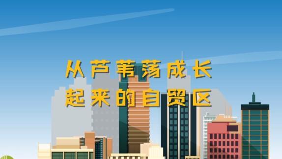40年,上海的变迁故事⑦ | 从芦苇荡成长起来的自贸区