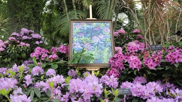 花·视界 | 在国内最大温室里领略梵高眼中的高山杜鹃