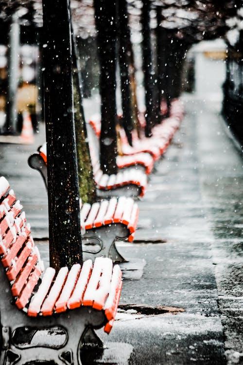 晨读 | 在寒冷的街头